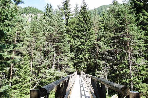 Backpack Nerd - Екопътека Бели Искър - приятна разходка
