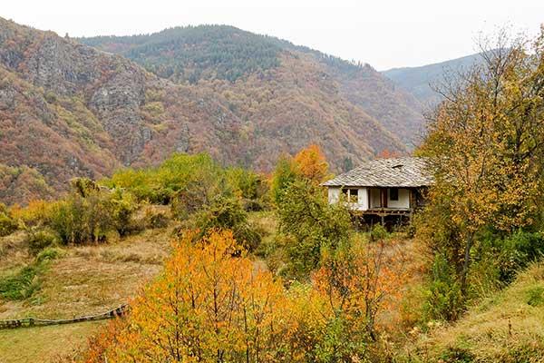 Backpack Nerd - Ковачевица през есента