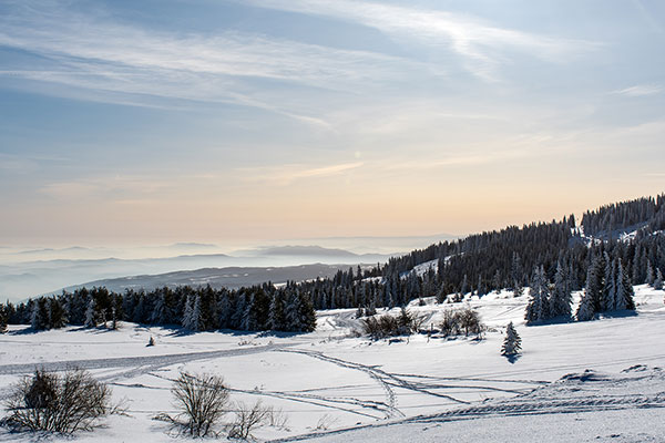 Backpack Nerd - Зимна Витоша